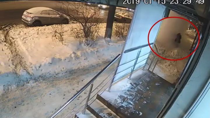 В Ярославле на двух женщин рухнула огромная глыба снега. Видео