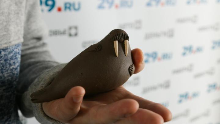 Как свистят моржи: архангельский гончар — о «честной» керамике и первом круге из стиральной машины
