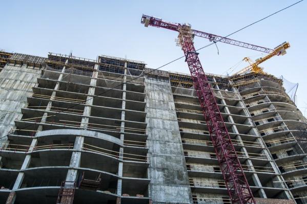 На месте Александровской рощи планируют построить новый жилой комплекс