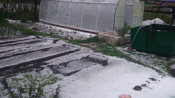 Лето в разгаре: в Башкирии выпал снег