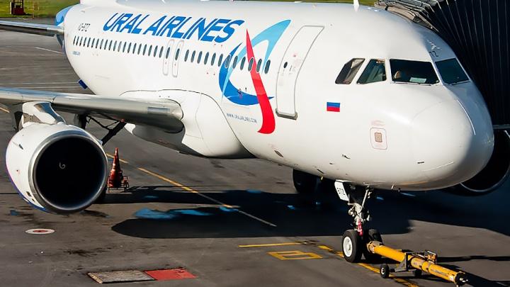 Летели в Москву, а попали в отделение: полицейские скрутили троих дебоширов в самолёте