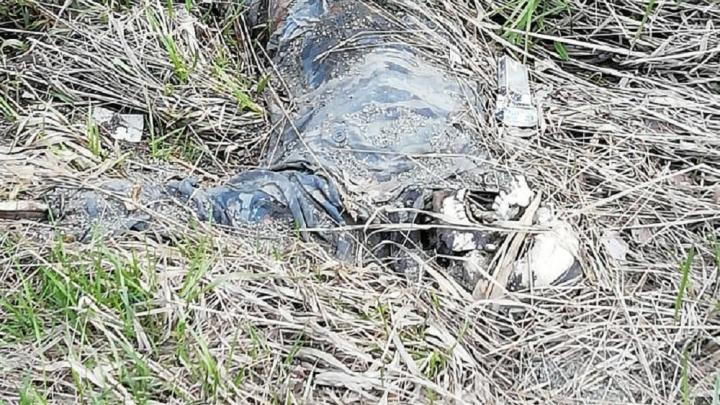 «Видно, что сброшен с дороги»: участники «Майской велопрогулки» нашли на ЕКАД скелет человека