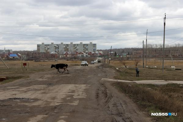Харино находится совсем рядом с Омском, но девятиэтажка здесь кажется небоскрёбом