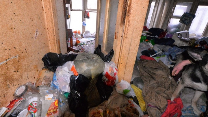 «Вонь на весь двор»: из квартиры с тараканами на Малышева начали вывозить мусор