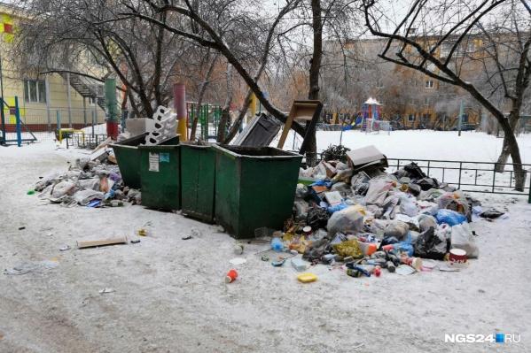Красноярский мусор активисты отправляют депутатам в Москву