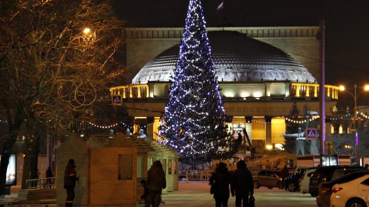 Фото: в Новосибирске зажглась главная новогодняя ёлка