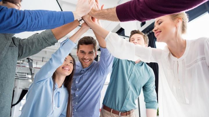 Каких людей брать в команду: бизнес-инсайт от волгоградского «охотника за головами»