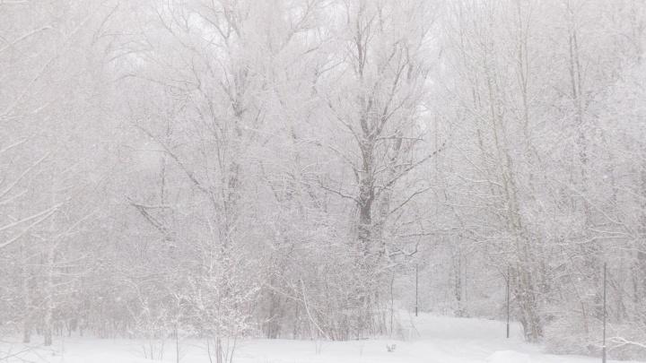 В Самарской области снегопад побил рекорд 1970 года