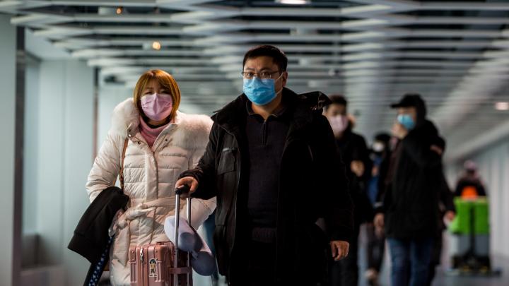 Мэр Новосибирска запретил поднимать цены на медицинские маски
