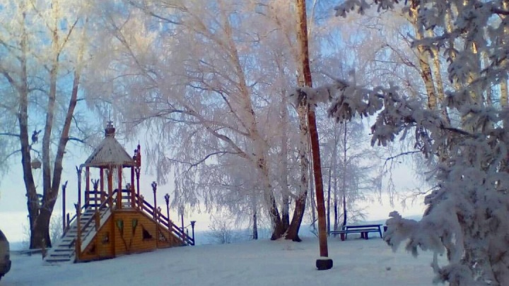 Сказочный корпоратив: гостям предложили горку, баню, хоккей в лесу на берегу Обского моря