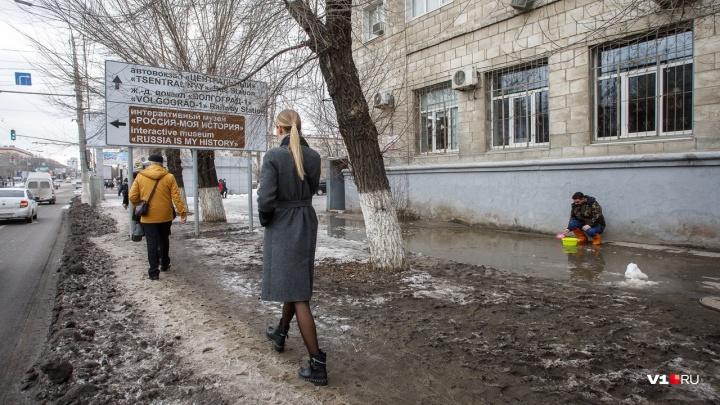 Волгоградской области пообещали весну в середине зимы
