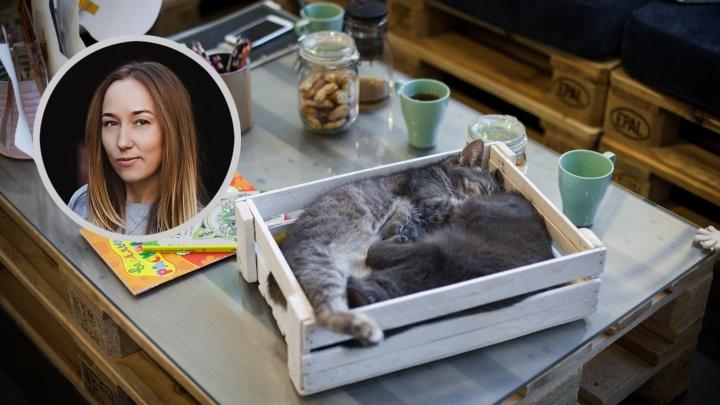 Анна Стародуб:«Мы спасаем десятки животных, но это капля в море»