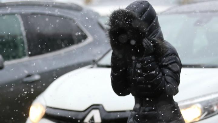 Экстренное предупреждение от МЧС: на Ярославль обрушится сильный ветер и снег