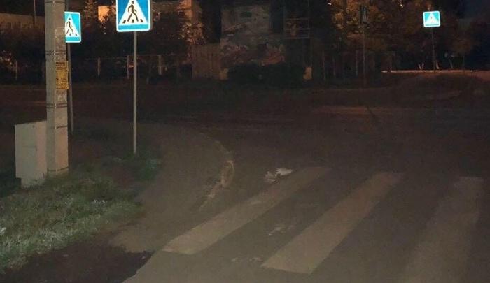 Конфиденциальность гарантируют: ГИБДД Башкирии разыскивает водителя, сбившего 13-летнюю девочку