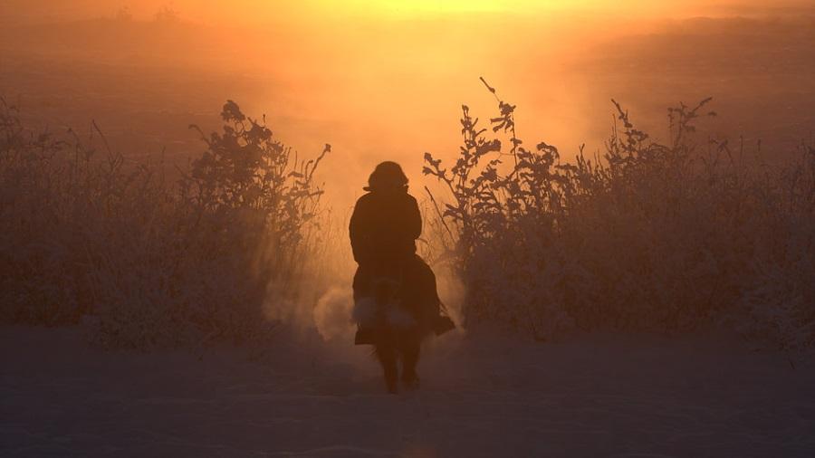 Фильмы о природе и человеке документалистов всего мира покажут в Новосибирске