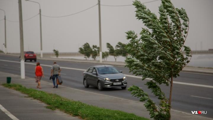 Жара vs шквалистый ветер и дожди: к концу недели в Волгоградской области похолодает на 10 градусов