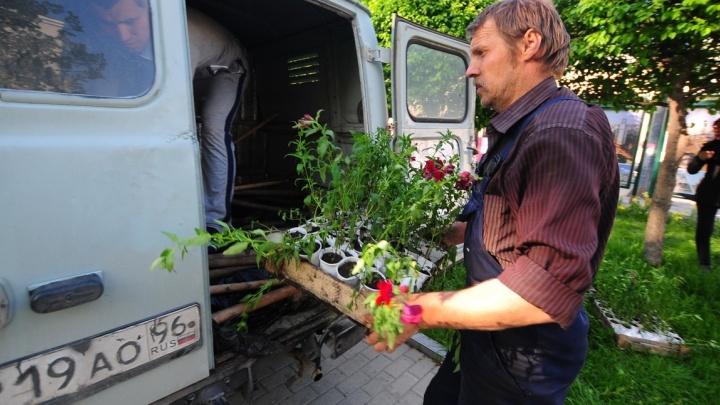 На выезде из Екатеринбурга высадят цветы за 3 миллиона рублей