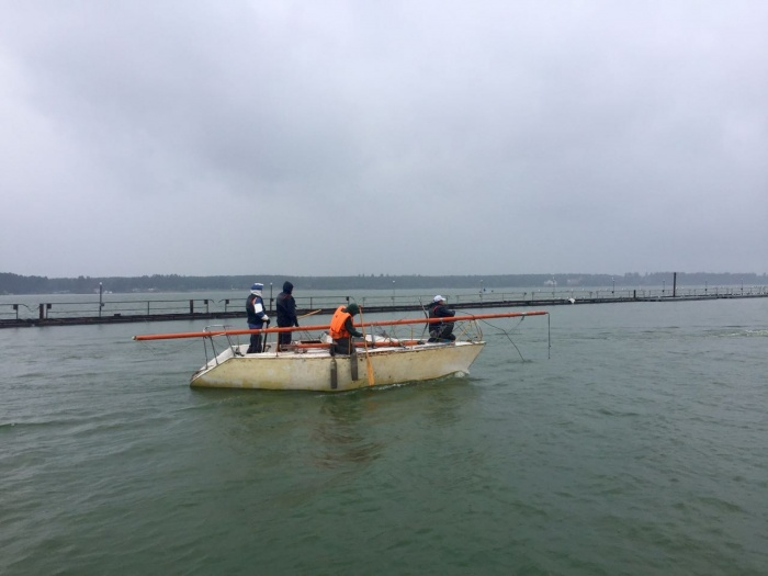 Ветер сломал мачты трём яхтам