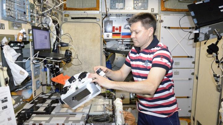 Раскопка предков и космическая щитовидка: 7 прорывов российских ученых, которыми надо гордиться