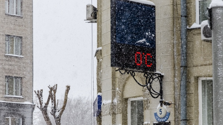 Синоптики пообещали тёплую погоду до конца недели