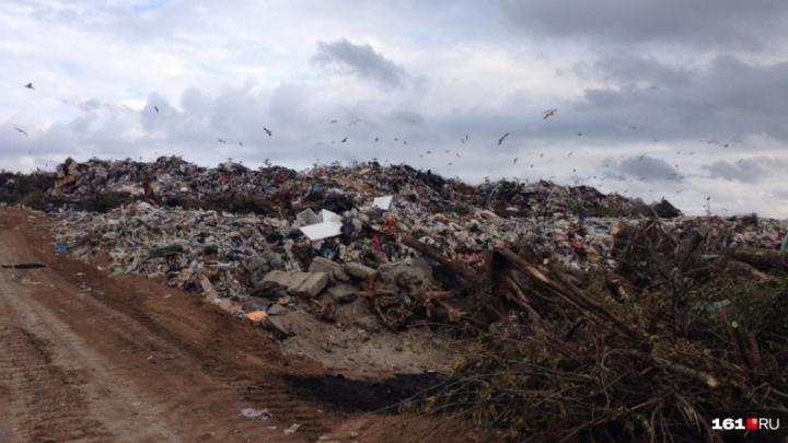 Исчезнут вонь, огонь и птицы: глава Министерства ЖКХ — о работе новых мусорных полигонов на Дону
