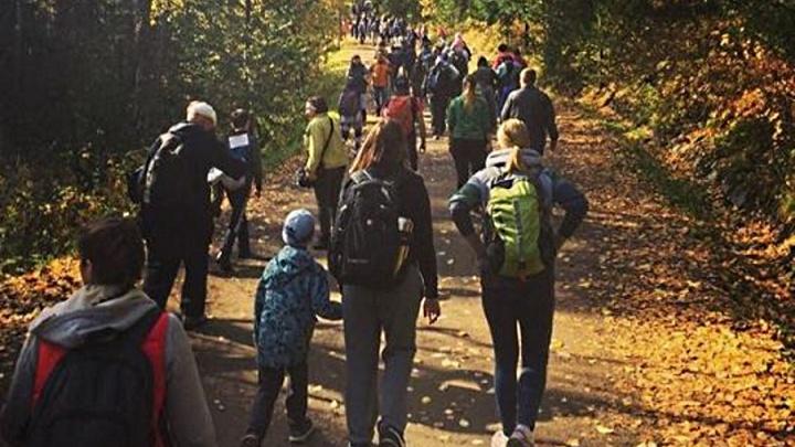 Поймать красоту: сотни красноярцев собираются в «пробку» на подходе к «Первому столбу»