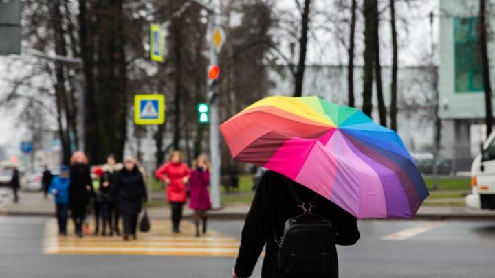 Антициклон разрушается: на Ярославль обрушатся дожди