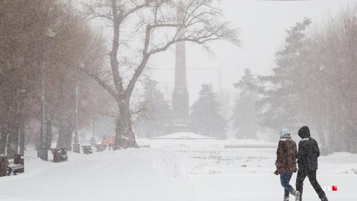 «Мокрый снег и метель»: в Волгоградской области похолодает до-5 ºС