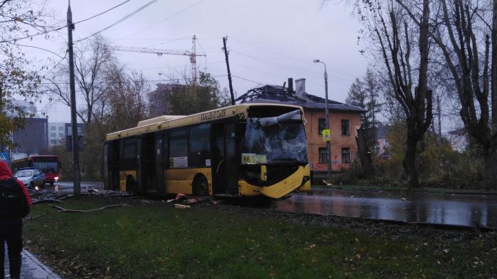 В Перми во время сильного ветра дерево упало на автобус с людьми