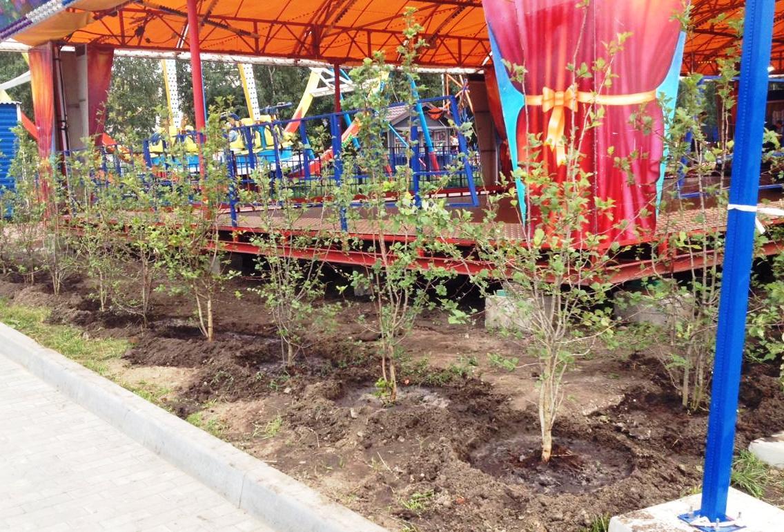 Изгородь будет разделять зону с аттракционами и променад для прогулок