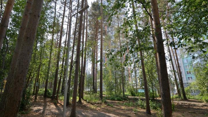 В Екатеринбурге открыли новую зеленую площадку для отдыха