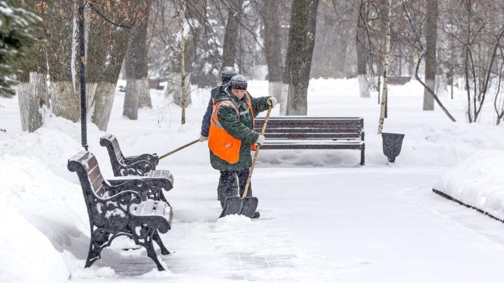 «Как оценить то, чего нет?»: ярославцы поставили оценку уборке города