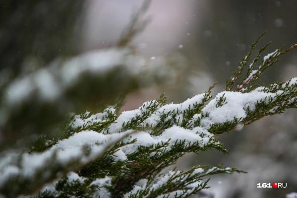 Первый в этом году снегопад порадовал жителей Донского региона