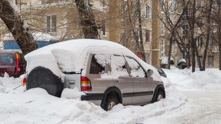 Новосибирец взломал кафе и зарылся в снегу под припаркованной машиной