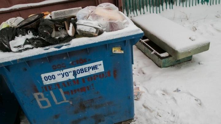 Жители пригорода Кургана, купившие баки за свои деньги, жалуются на невывоз мусора