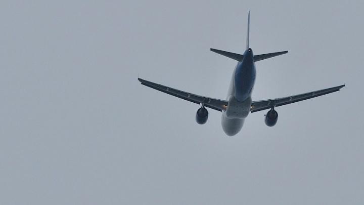 Оборвали крылья: авиакомпаниям разрешили не пускать на борт буйных пассажиров
