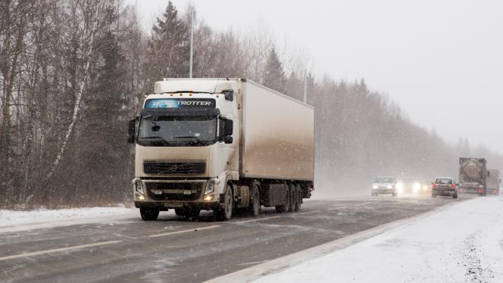 Часть Московского проспекта и улицы Калинина хотят освободить от грузовиков