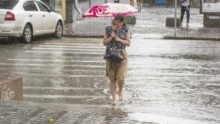 По области объявили штормовое предупреждение: новосибирцев ждут сильный ветер и дождь