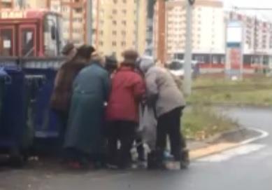 В Ярославле пенсионеры подрались из-за продуктов из помойки