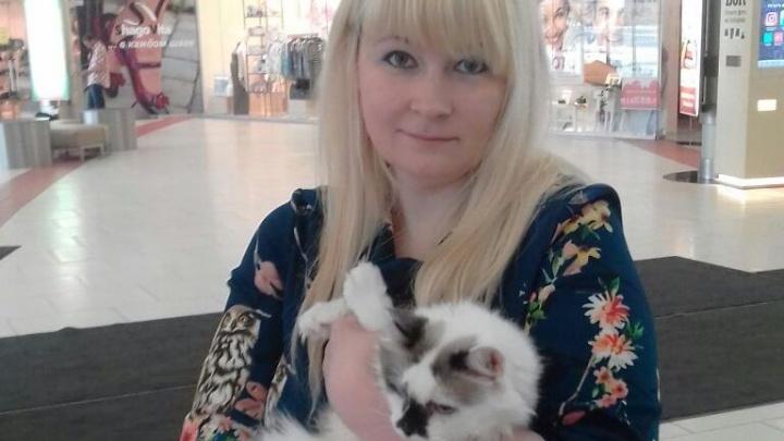Новосибирцы забрали домой бездомных кошек и собак