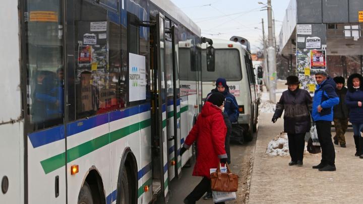 Автобусам «Башавтотранса» выбрали новый дизайн