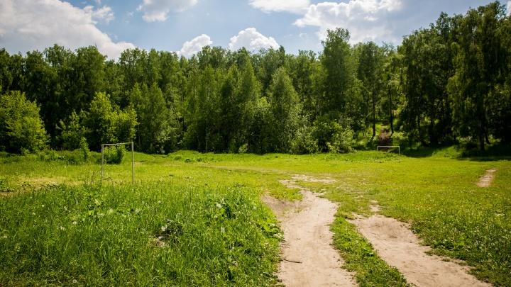 Бывший чиновник получил от мэрии участок земли в Нижней Ельцовке