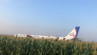 Двигатели гудели, люди кричали: видео аварийной посадки самолета в кукурузном поле