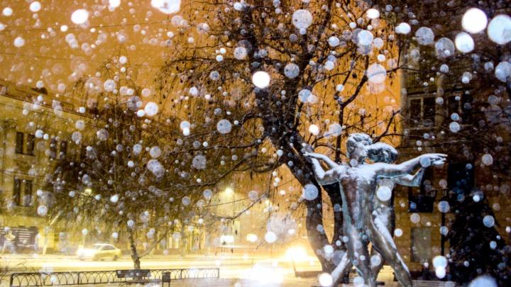 И влюбленные оделись в белые одежды: волгоградский фотограф снял вечерний снегопад
