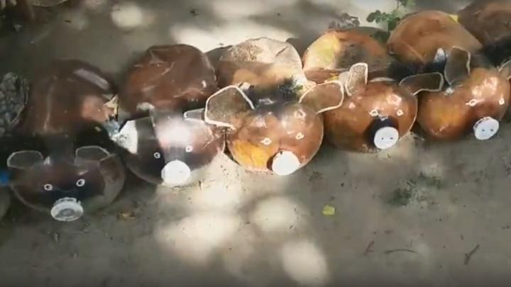 Благоустройство по-волгоградски: во дворе дома сделали для детей хрюшек из кег и оставили одежду