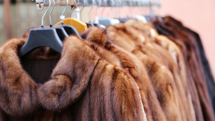 Подготовить теплую одежду к холодам и обновить зимний гардероб омичи смогут без удара по бюджету