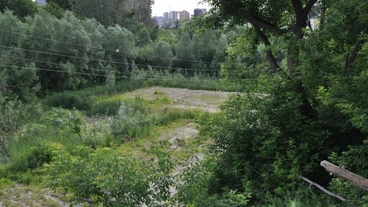 Висячие сады Ельцовки: у реки начали строить новый парк