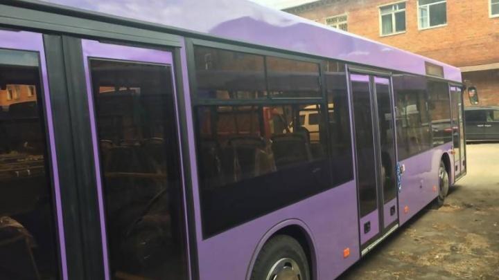 В Архангельске появится новый автобус большого класса