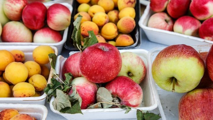 «Сердце буйвола» и «музыкальные» яблоки: что и почем продают на дачных рынках Волгограда
