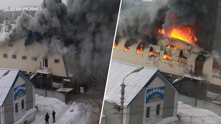 Сильнейший пожар в Искитиме глазами очевидцев — утром там сгорел местный рынок